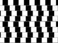 Linii paralele
