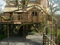 Cea mai tare casa in copac