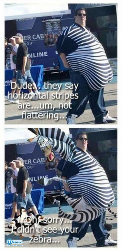 Tine o zebra in brate