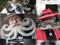 Concurs internatinal de mustati