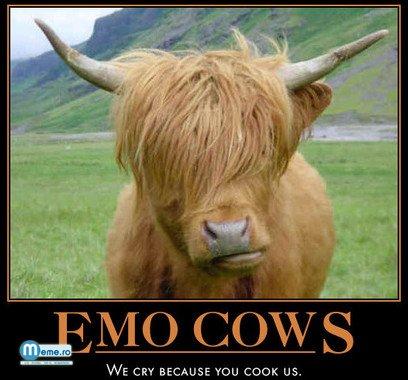 Vaca emo