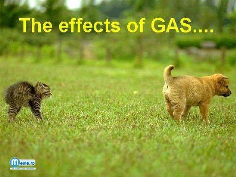 Efectele gazelor