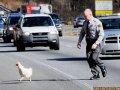 De ce traverseaza politistii strada