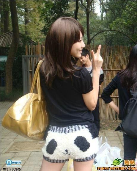 Panda vesel :)